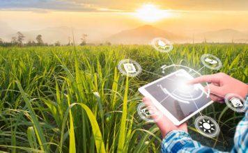 Virtuele twin landbouw